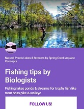 Trout Bass Salmon Walleye Bream Pike and Panfish Fishing tips by Biologists