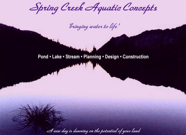 Read our pond design page, then click photo to dive right in